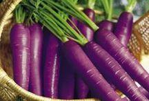 Purple Eats! / Delicious, Nutritious and Purple!