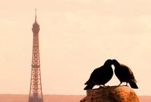 Love n' Romance