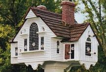 Bird Houses/Feeders etc.