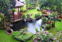 Garden Ponds and Fountains