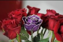Purple Gifts / Great purple gift ideas for the purple-lover in your life!
