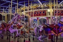 Carousels / Oh! the magicalness of the carousel & how it takes you back to a simpler place & time.......hummmmmmm. / by Suzie Suchman