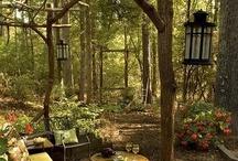 Backyard Ideas / by Suzie Suchman