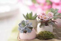 Floral Crafts / www.Charmios.com
