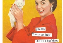 """Crazy Cat Lady / You say """"crazy cat lady"""" like it's a bad thing. / by Lisa Tudor"""