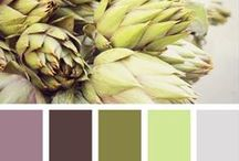 Color Schemes / by Dawn May