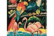 Caribbean Beach Inspirations