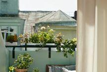 Balcony / by Lovisa Grönlund