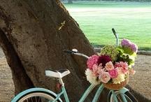 Flowers-Petals Everywhere Please!