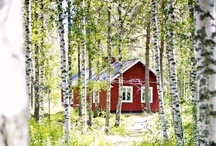 Finland and all things Finnish / by Katriina Mueller