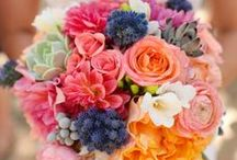 Bouquets  / by Wedding Details by Samantha