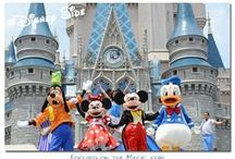 Disney's Magic Kingdom / by Deb, Focused on the Magic