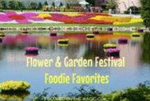 Epcot's Flower & Garden Festival / by Focused on the Magic Blog