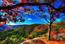 Georgia/Tennessee Destinations / Destinations to visit close by.  / by Sarah M