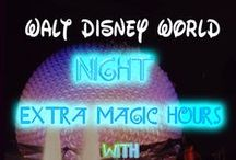 Disney World Travel Tips / | Disney World Tips and Tricks | Disney Tips | Disney World Resorts | Disney World Dining | Disney World Planning | Disney World Planning Tips | Disney Travel Ideas | Disney Travel Tips |  / by Focused on the Magic Blog