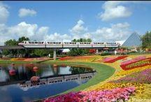 Disney Spring