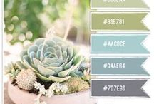 INSPIRE color - kolor
