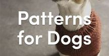 Knitting Patterns for Dogs / A board full of adorable knitting and crochet patterns for dogs! From dog sweaters to dog toys, you'll find patterns for pups of all shapes and sizes.