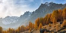 Foliage in Italy / The amazing colours of Italy in Autumn! L'incantevole bellezza dell'Italia in autunno!