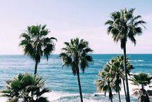 LA Living / by Splendid