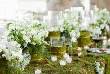 Tablescapes / by Jessie {Rise and Swine}