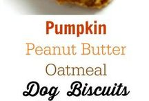 Pumpkin Dog Treats / Find and save ideas about Pumpkin dog biscuits here! | See more about Diy dog treats, Pumpkin dog treats and Puppy treats!