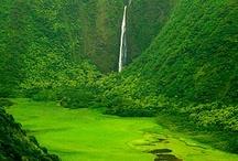 Kauai / Beautiful Kauai