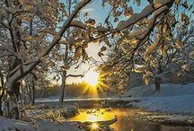 Snow / Snow Styles