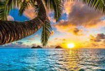Aloha Hawaii / Aloha Hawaii  - Only Oahu -