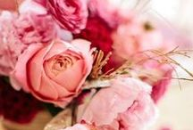 Pick Pink / Pretty in pink! Flowers, dresses, jewelry, shoes and everything pink.  / by Nordstrom