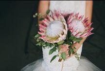 Weddings/flowers/parties