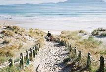 Coastal Living / The beauty of the coast and summer loving