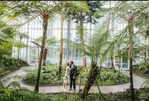 "✔️ | wedding: botanical garten / ""Die Welt in einem Garten"" [The world in a single garden] – this was the plan of Adolf Engler, the first director of the Gardens of Dahlem in 1889.   ///   turn-of-the-century / elegant / modern / classic / garden   ///"