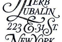 Typography / by emily brett