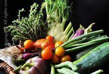 food : taste education for kids