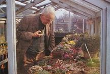 Meet me in the garden / Gardens, gardening and greenhouses. / by Charlie Matthews