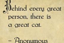 Pets = Family ❤️