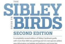 The Sibley Guide to Birds, Second Edition / In celebration of the publication of a completely revised edition of Sibley's landmark guide, we share with you 31 Days of Birds!