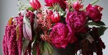 Floral Arrangements & Styling / Flowers, floral styling, floral arrangements and floral inspiration