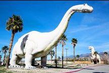 Palm Springs Sights & Bites