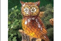 Amber & Owls / by Brook Pecha