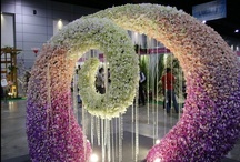 Art - Floral Design (non-wedding) / by Brook Pecha