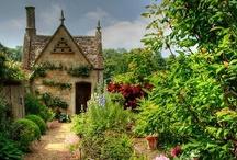 Stroll Through the Garden / Enchanted gardens of the floral variety