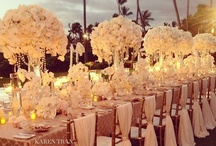 My Fairytale Wedding <3 / by Michaela Stambaugh