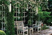 In My Dream Garden....? / There are so many beautiful ideas for a lovely garden...This board is a collection of flowers, designs and things that I would love to have in my dream garden.....  http://dabbiesgardenideas.com