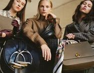 Mulberry Campaigns