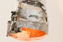 Birch / by Elena Kovyrzina