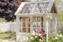 Beautiful Greenhouse Gardening / http://dabbiesgardenideas.com