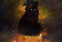Holidays - Halloween / by Lola Granola