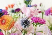 Dreamy flowers / Beautiful flowers, bouquets, wedding flowers, nature at it's best.